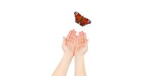 Mindfulness | Omgaan met verandering, spanning en stress (Online training en coaching)